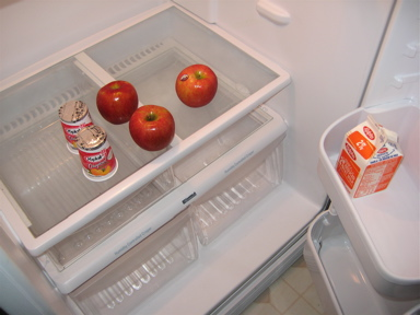 EmptyFridge1