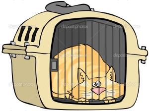 depositphotos_10500004-Cat-In-Pet-Carrier